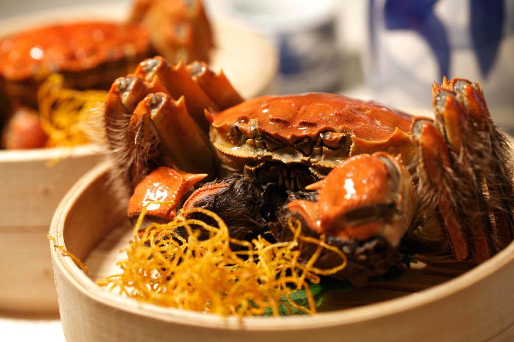 Hairy Crab 1-1.jpg
