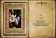 Evangelio según San Lucas 11,29-32. Obra Padre Cotallo
