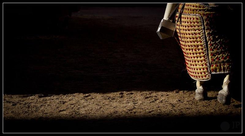 caballo de picar