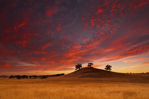 sunset sky field night landscape cloudy wheat folsom sacramento knoll oaktree northerncalfornia ernogy