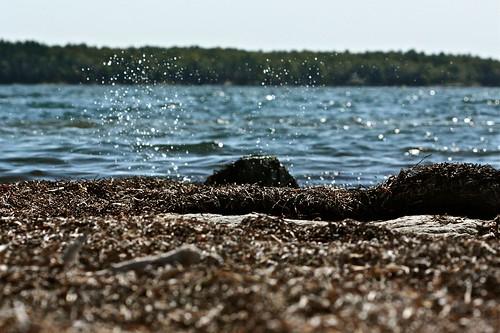 The Unquiet Island 03