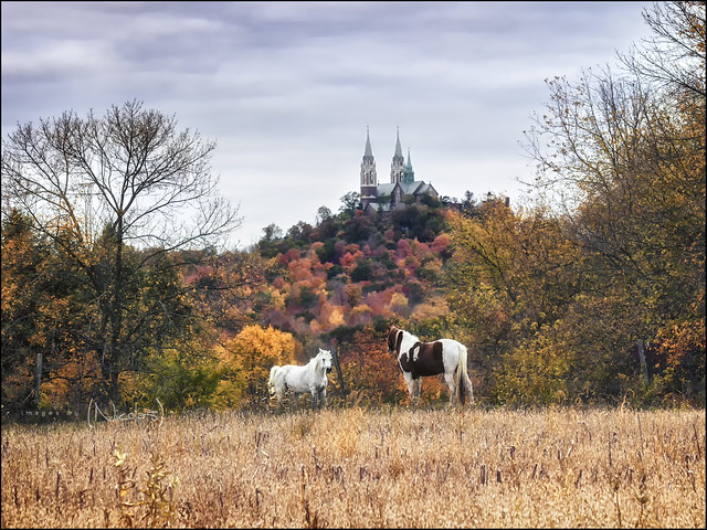 8064136736_bb54f76e43_z - Basilica of Mary Help of Christians, Holy Hill, Wisconsin - Anonymous Diary Blog