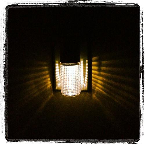 #FMSphotoaday Day 7 - Light
