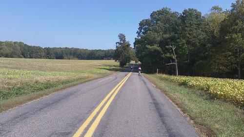 Tour of Richmond Oct 6, 2012 (11)