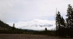 California  -  Mt. Shasta   -   June 1975