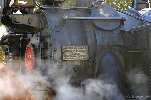 niles canyon railroad 060