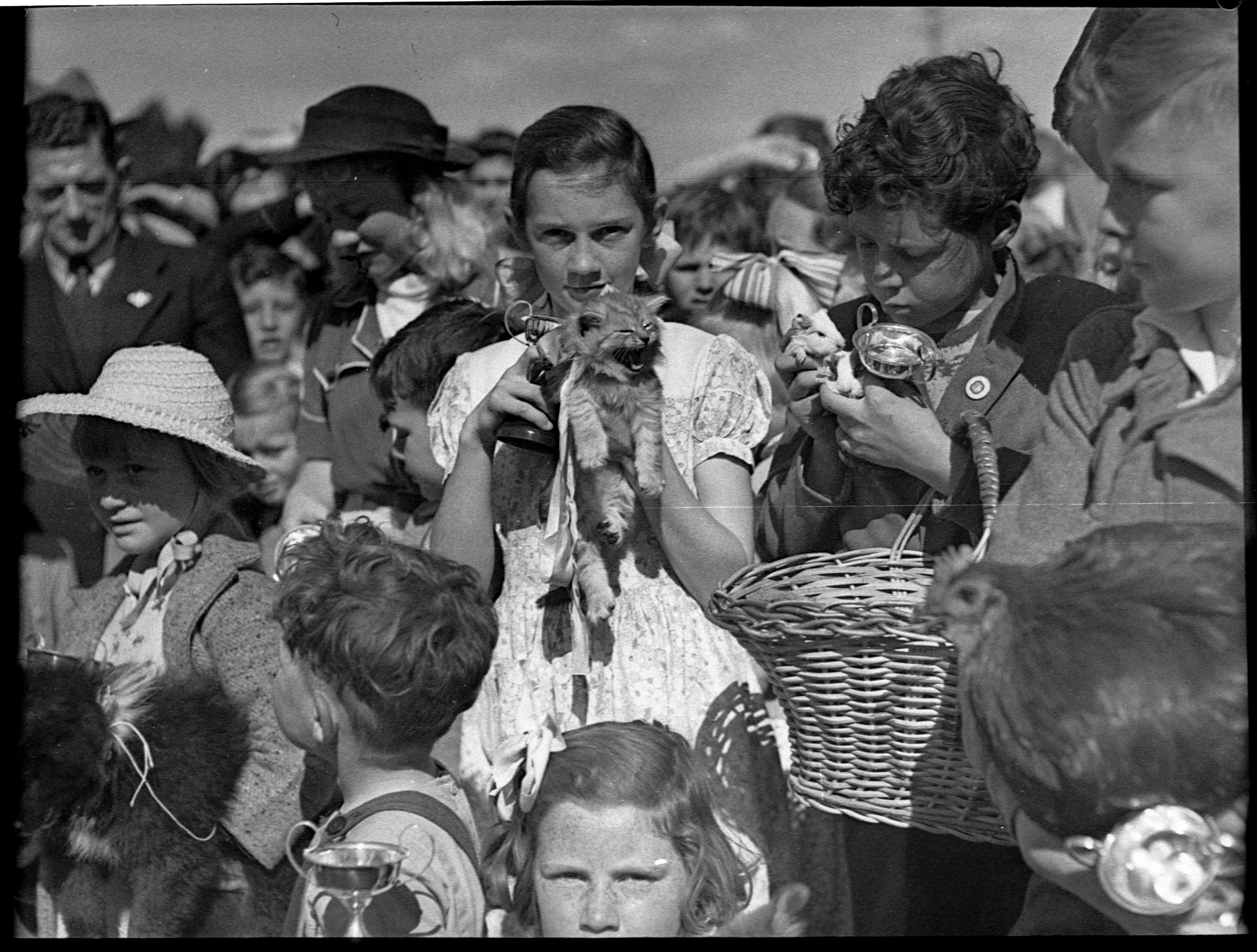 Eastwood pet parade, 5 September 1951, Sam Hood