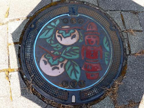 Aimi Tottori manhole cover (鳥取県会見町のマンホール)