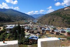 Thimbu
