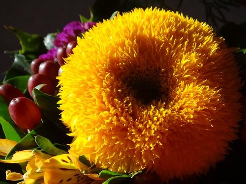 Happy Sunday!!!  ( Explore #80 ) by Gartenzauber