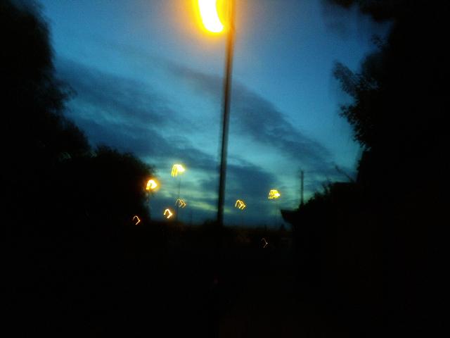 PIC_2252