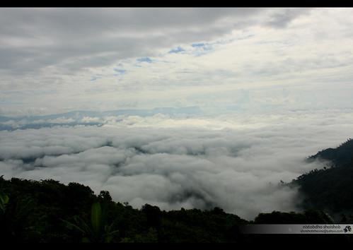 Nilgiri, the sea of Clouds