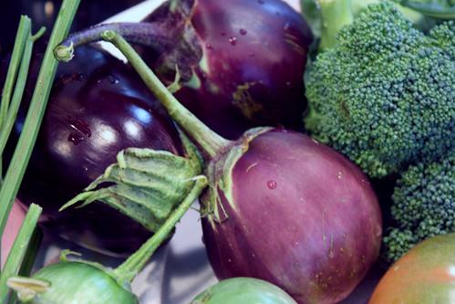 purple eggplants 059
