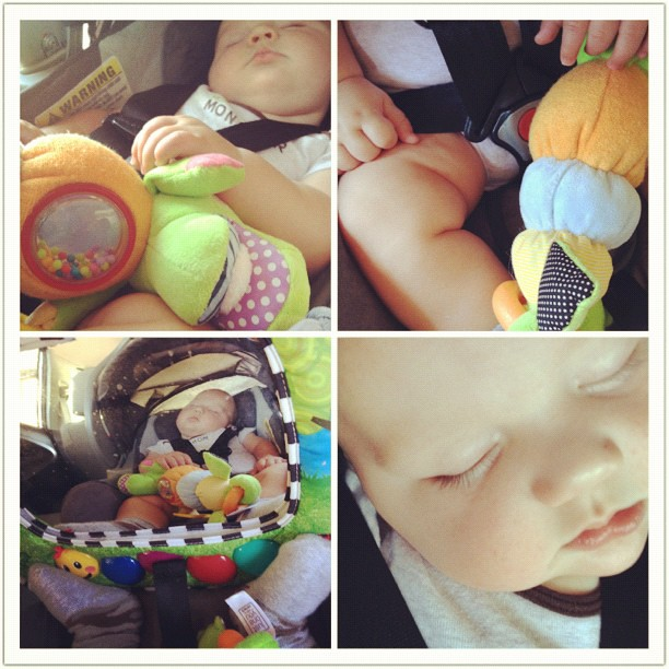Saturday morning errands really knock this little guy out!