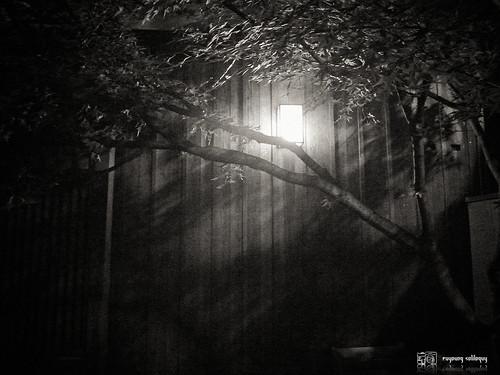 Samsung_EX2F_night_09