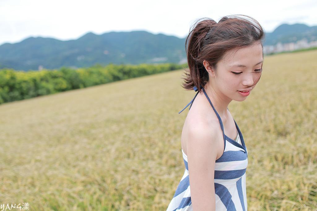 怡陵◆稻香