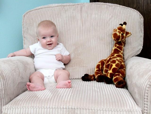 M vs Giraffe week 16