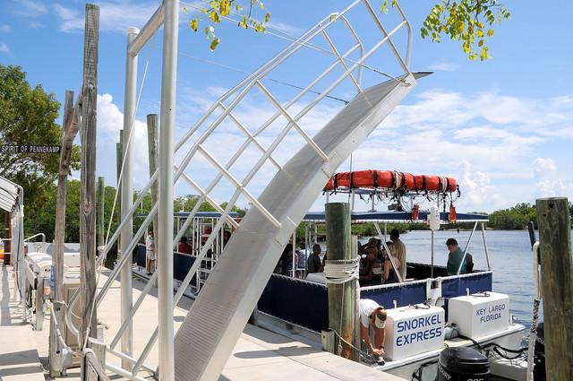 Top 10 Florida Boat Tours & Cruises