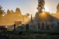 Warmth comes to the graveyard
