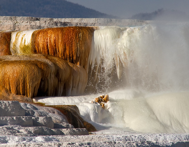 Mammoth Hot Springs 17