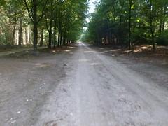 PA018806