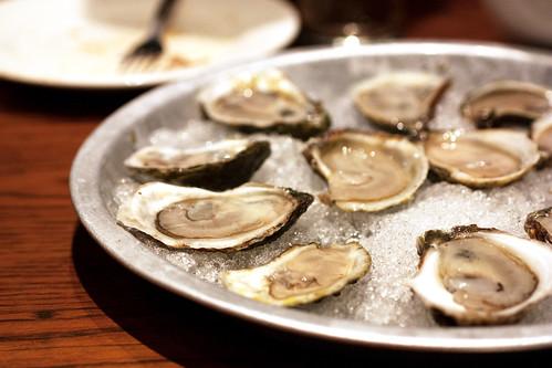 oysters @ momofuku ssam