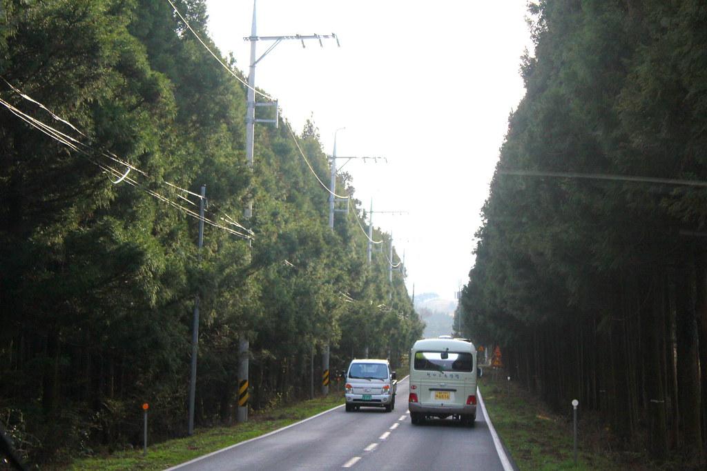 Jeju road