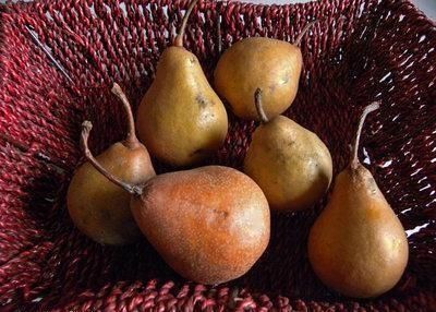 瓷盅時蔬百燴與秋令水果。食材篇-121007