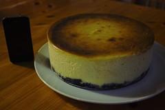 cake, semifreddo, baking, buttercream, baked goods, food, cheesecake, soufflã©, dessert, cuisine,
