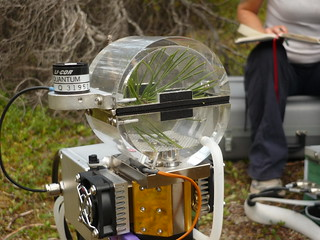 MPB-03 : Cuvette to measure net-CO2 exchange