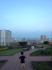 夕方散歩:とらちゃんと月 (2012/8/30)