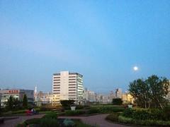 満月と東京タワー@アトレ恵比寿屋上 (2012/8/31)