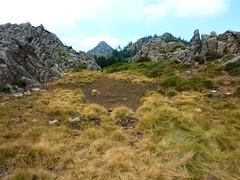 Tour de la plaine d'Uovacce : le laquet du Monte Tignoso à sec et la pointe 1301 (?)