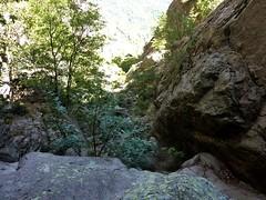 Remontée du haut-Velacu : un des ressauts franchis sous le trou du Tafonu