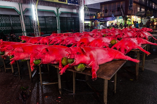 indonesia raw auction pigs lanternfestival capgomeh westkalimantan singkawang nikond7000 yemaria culturehappening paintedpork