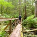 Rick on log bridge - en route to Nissen Bight - Cape Scott Trail, BC