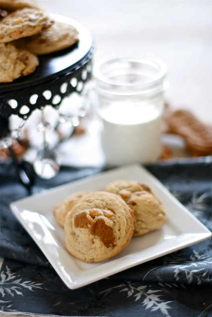 Biscoff Cheesecake Pudding Cookies 003