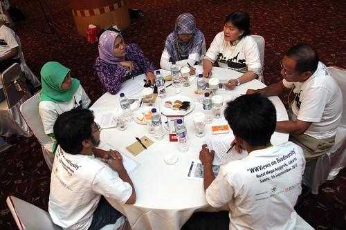 WWViews on Biodiversity in Indonesia_18