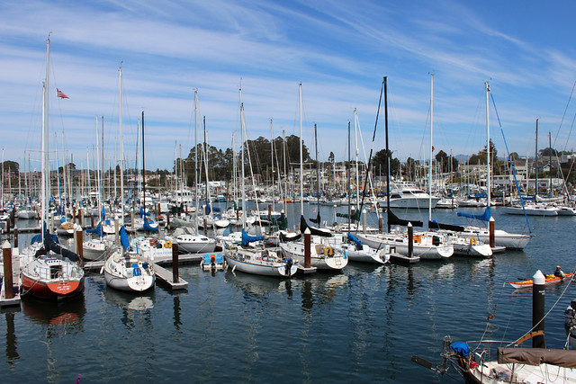 Matchless santa cruz harbor there