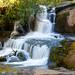 Small photo of Alsea Falls