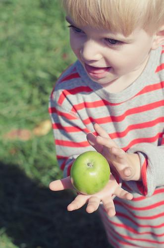 Apples-0129-2