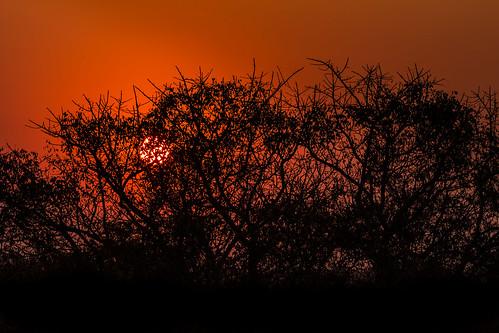 africa sunset nature landscape southafrica sonnenuntergang dusk 日落 südafrika 非洲 南非 60d