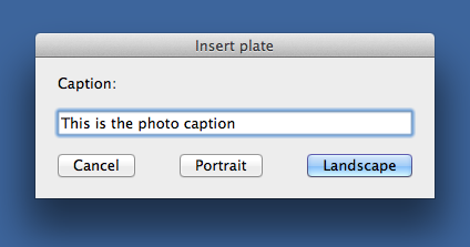 Combined caption and orientation dialog