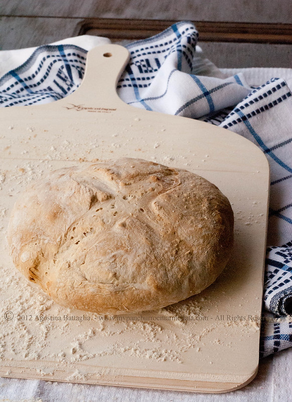 pane con lievito di governo mozzarelle