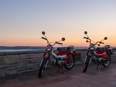 Hondas at Kerry Park