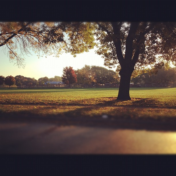 Fall Morning #perfectfallday #instamuse