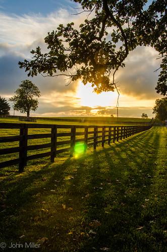 horse sun sunrise fence lens landscape nikon farm flare sunburst shodow d7000