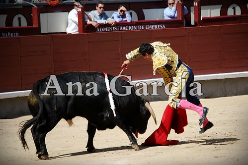 Andrés41