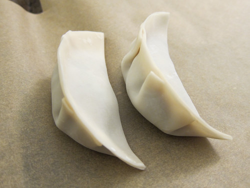 Pork and Mushroom Dumplings