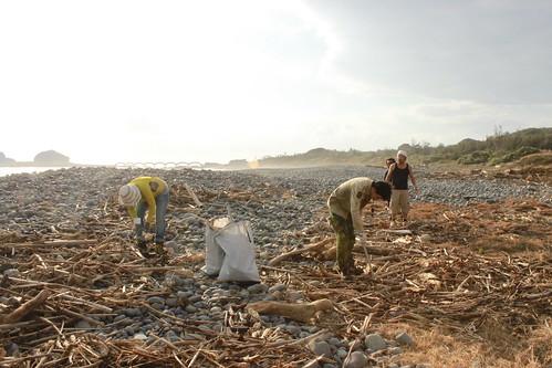 志工努力清除海灘上的垃圾